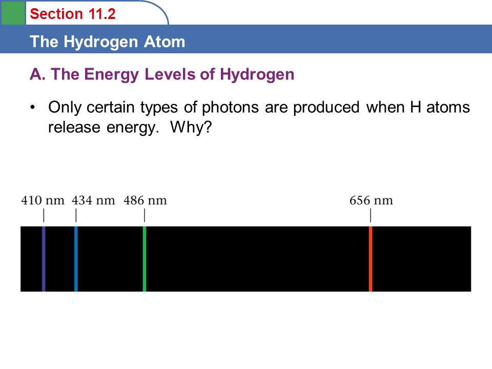 Section 11.2 The Hydrogen Atom A. The Energy Levels of Hydrogen Only certain types of photons are produced when H atoms release energy. Why?
