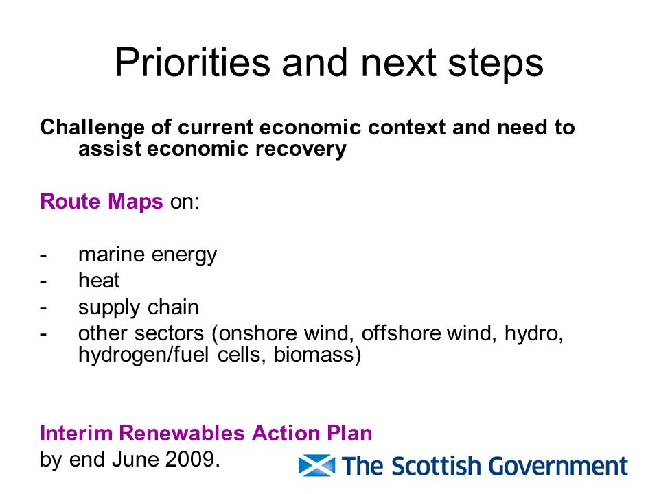 Priorities and next steps Challenge of current economic context and need to assist economic recovery Route Maps on: - marine energy - heat -supply chain -other sectors (onshore wind, offshore wind, hydro, hydrogen/fuel cells, biomass) Interim Renewables Action Plan by end June 2009.