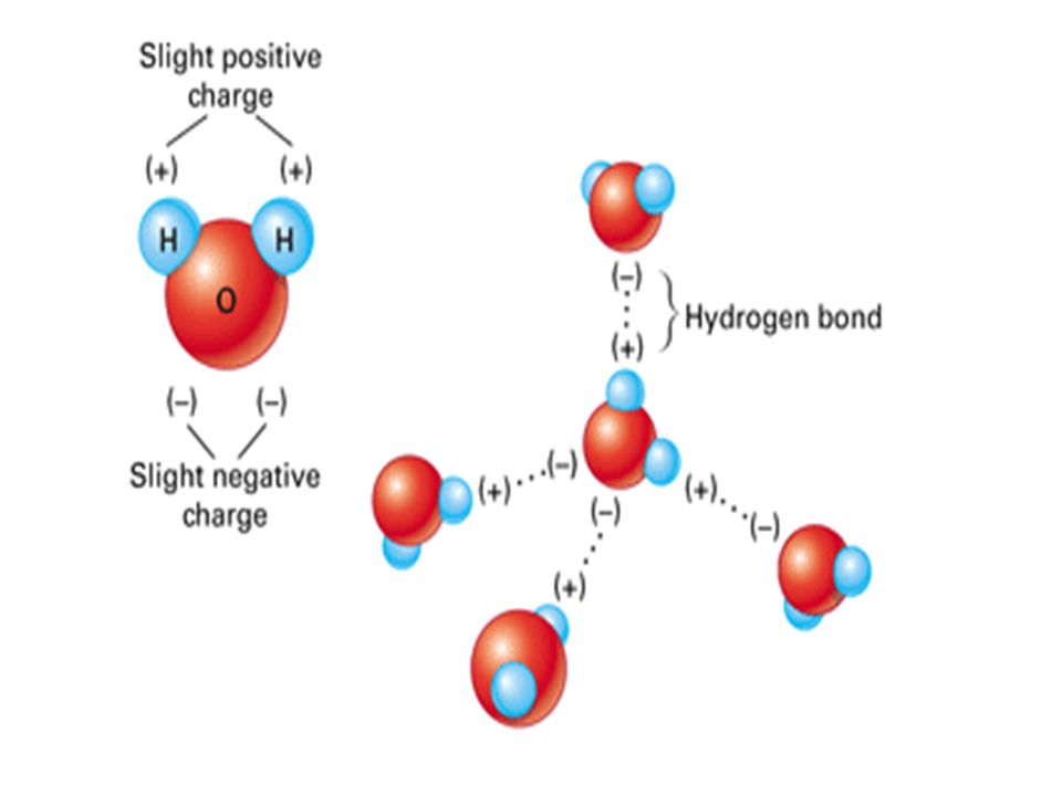 A molecule in which opposite ends have opposite electric charges is called a polar molecule.