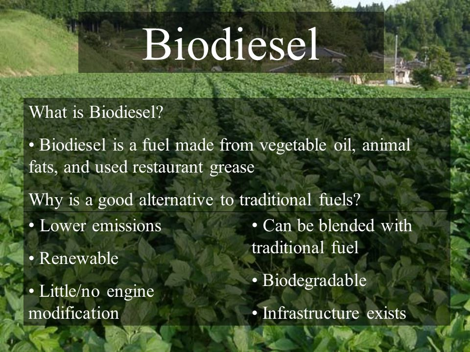 Biodiesel What is Biodiesel.