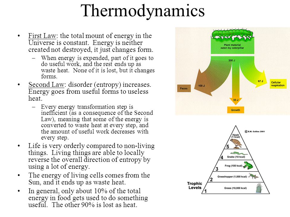 Thermodynamics First Law: the total mount of energy in the Universe is constant. Energy is neither created not destroyed, it just changes form. –When