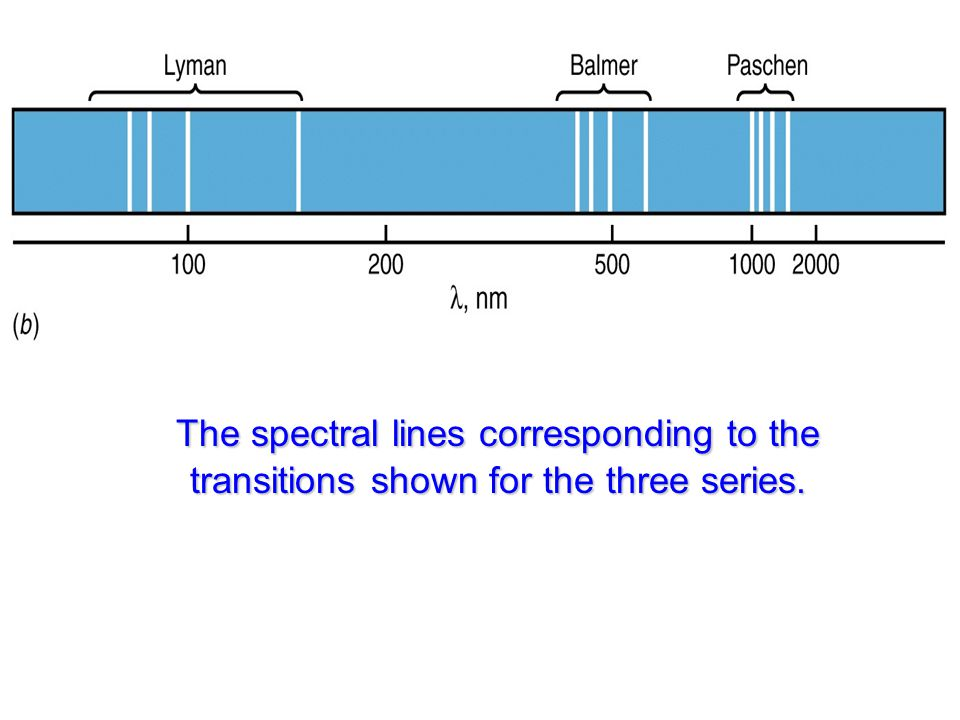 The spectral lines corresponding to the transitions shown for the three series.
