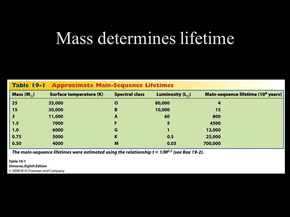 Mass determines lifetime