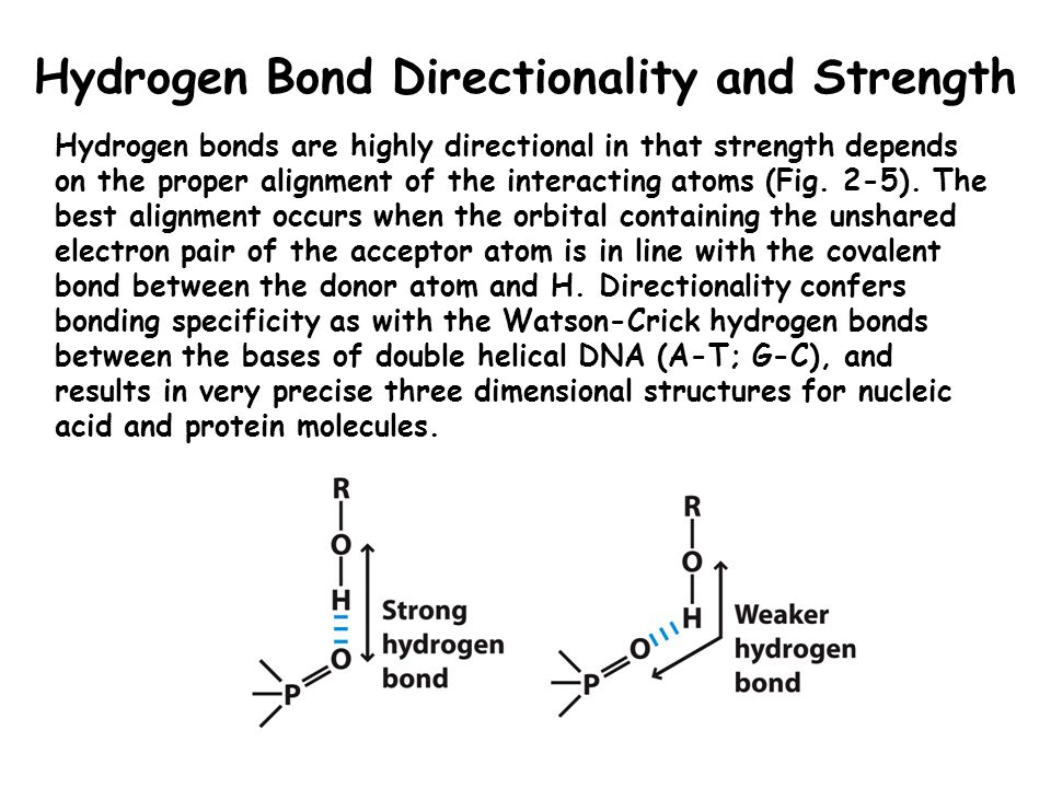 Classification of Biomolecules Based on Their Interactions with Water Polar biomolecules that dissolve easily in water are referred to as hydrophilic (water-loving).
