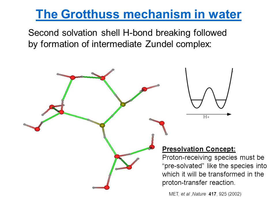 The Grotthuss mechanism in water Second solvation shell H-bond breaking followed by formation of intermediate Zundel complex: P Presolvation Concept: Proton-receiving species must be pre-solvated like the species into which it will be transformed in the proton-transfer reaction.