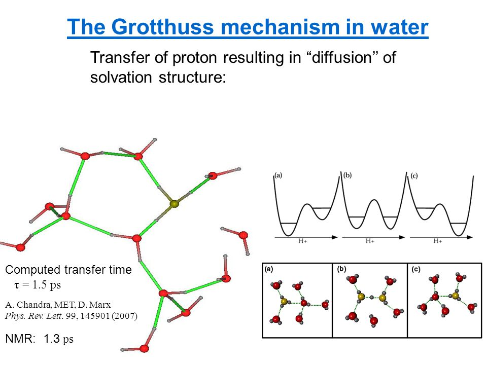 The Grotthuss mechanism in water Computed transfer time τ = 1.5 ps NMR: 1.3 ps Transfer of proton resulting in diffusion'' of solvation structure: A.