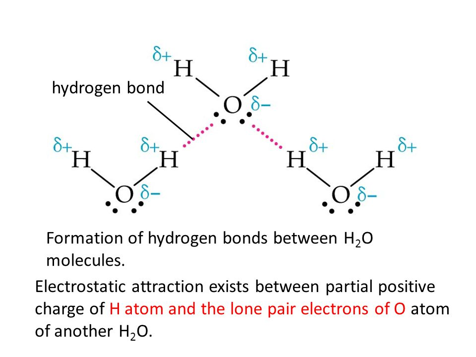 hydrogen bond Formation of hydrogen bonds between HF molecules.