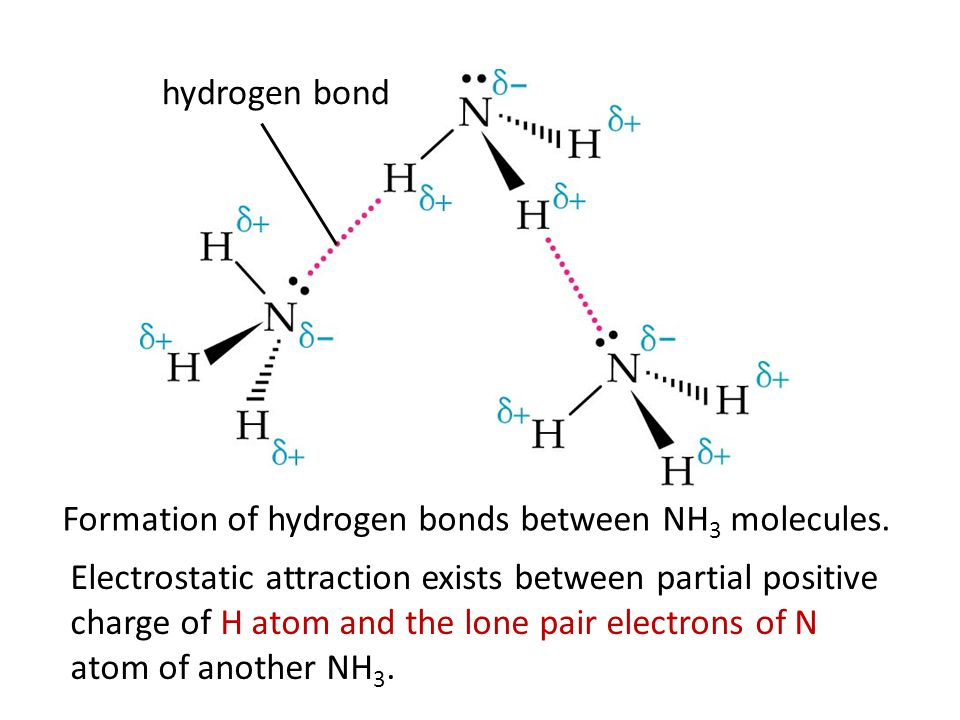 Formation of hydrogen bonds between H 2 O molecules. hydrogen bond Electrostatic attraction exists between partial positive charge of H atom and the l