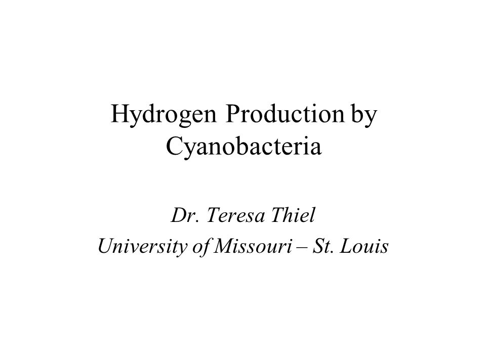 Hydrogen Production by Cyanobacteria Dr. Teresa Thiel University of Missouri – St. Louis