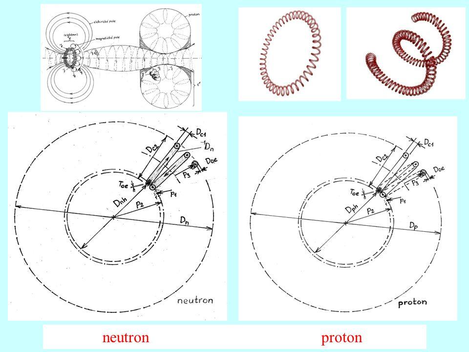 neutron proton
