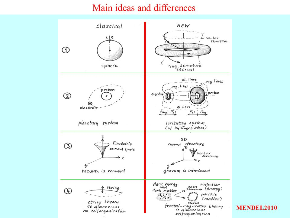 Main ideas and differences MENDEL2010