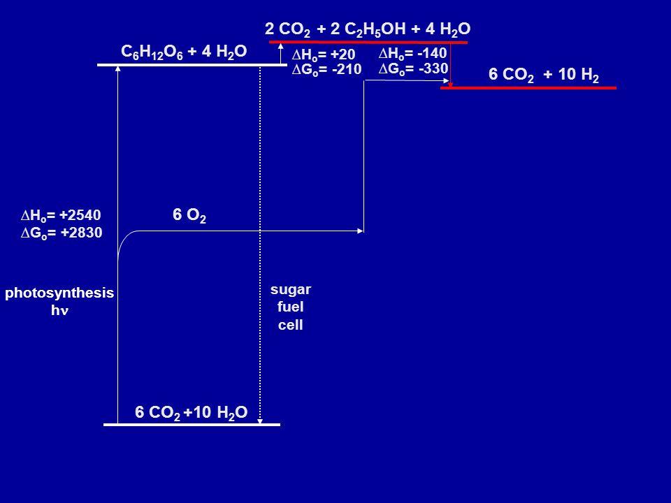 photosynthesis h 2 CO 2 + 2 C 2 H 5 OH + 4 H 2 O 6 CO 2 + 10 H 2 ∆H o = +20 ∆G o = -210 ∆H o = -140 ∆G o = -330 C 6 H 12 O 6 + 4 H 2 O 6 CO 2 +10 H 2 O ∆H o = +2540 ∆G o = +2830 sugar fuel cell 6 O 2
