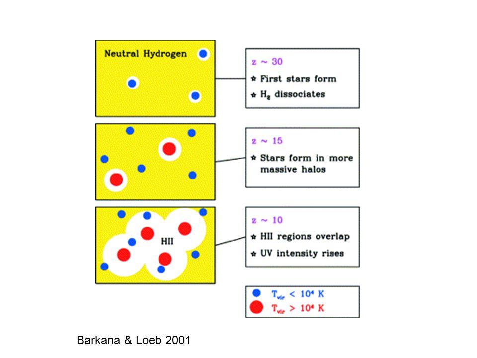 Barkana & Loeb 2001