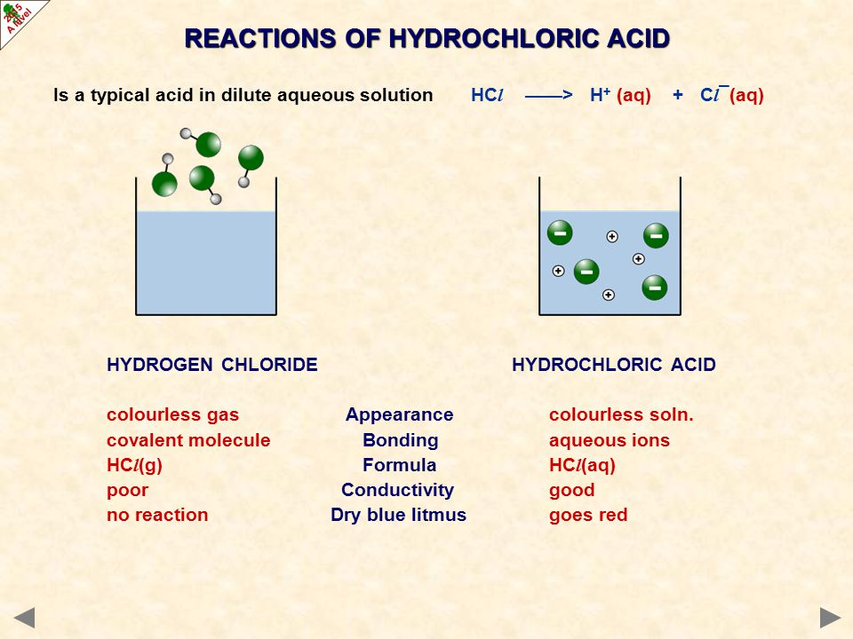 Is a typical acid in dilute aqueous solution HC l ——> H + (aq) + C l ¯(aq) REACTIONS OF HYDROCHLORIC ACID HYDROGEN CHLORIDE HYDROCHLORIC ACID colourless gas Appearance colourless soln.