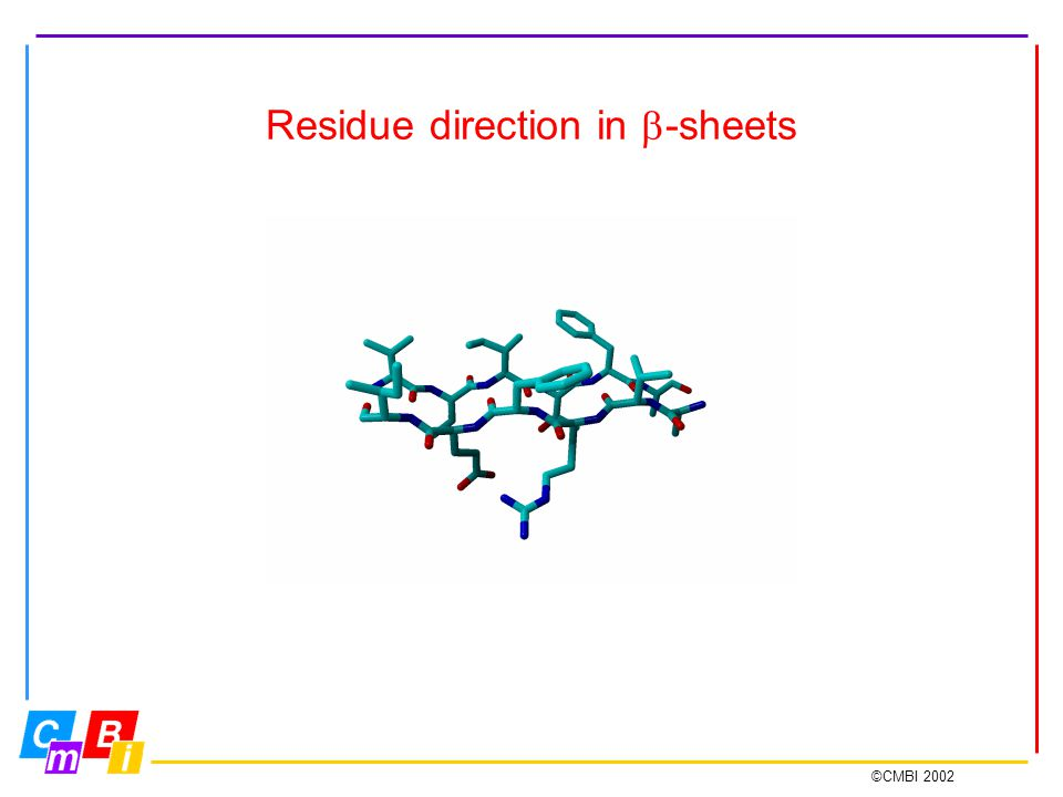 ©CMBI 2002 Residue direction in  -sheets