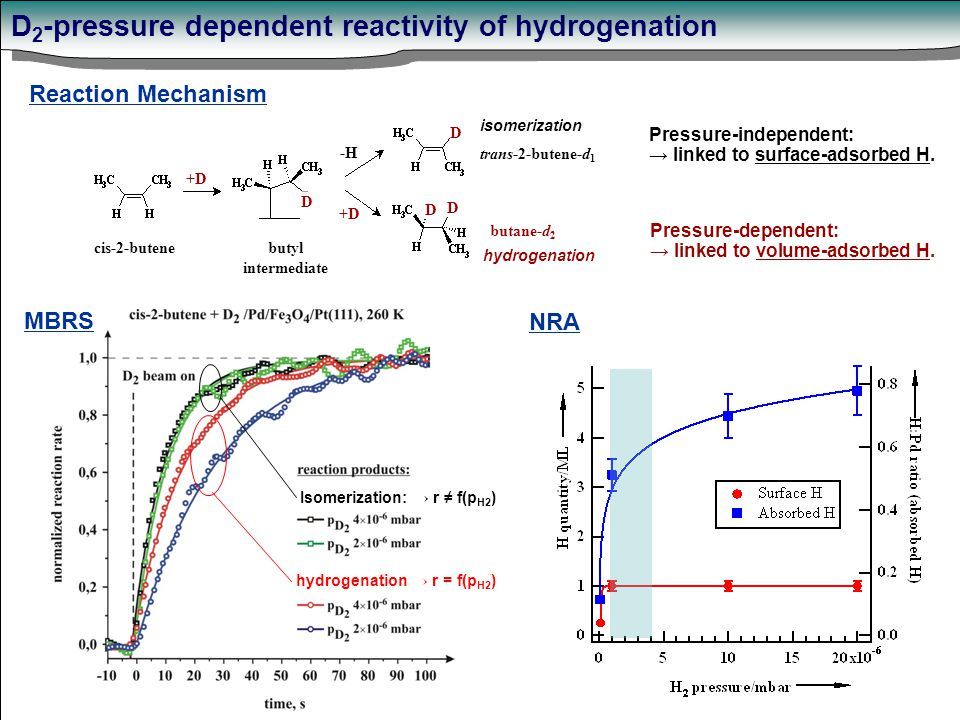 D 2 -pressure dependent reactivity of hydrogenation Isomerization: → r ≠ f(p H2 ) hydrogenation → r = f(p H2 ) NRA MBRS +D D D D D -H cis-2-butene butyl intermediate trans-2-butene-d 1 butane-d 2 isomerization hydrogenation Pressure-independent: → linked to surface-adsorbed H.