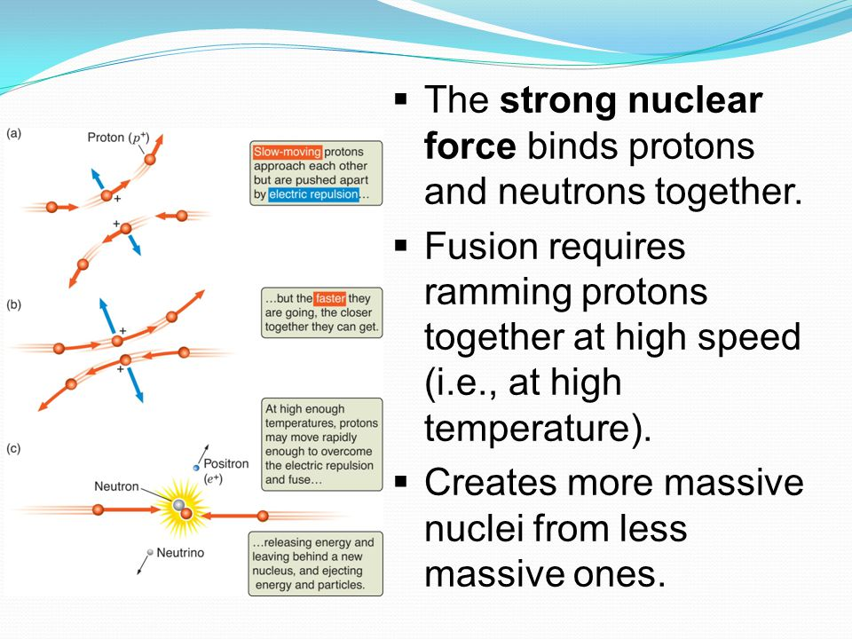  The strong nuclear force binds protons and neutrons together.