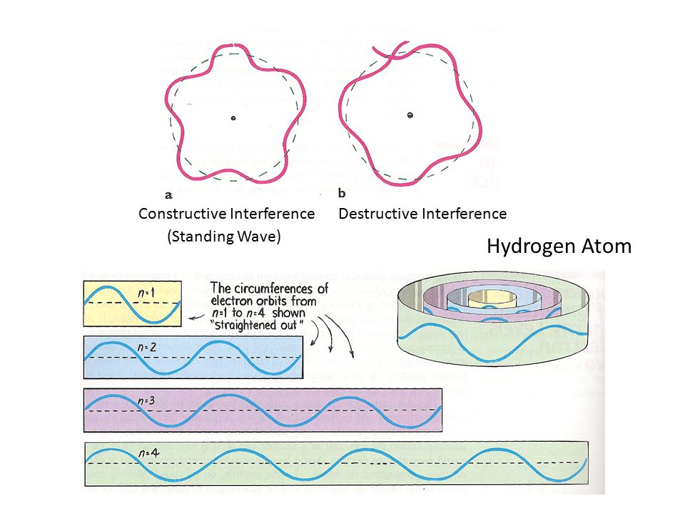 Constructive InterferenceDestructive Interference (Standing Wave) Hydrogen Atom