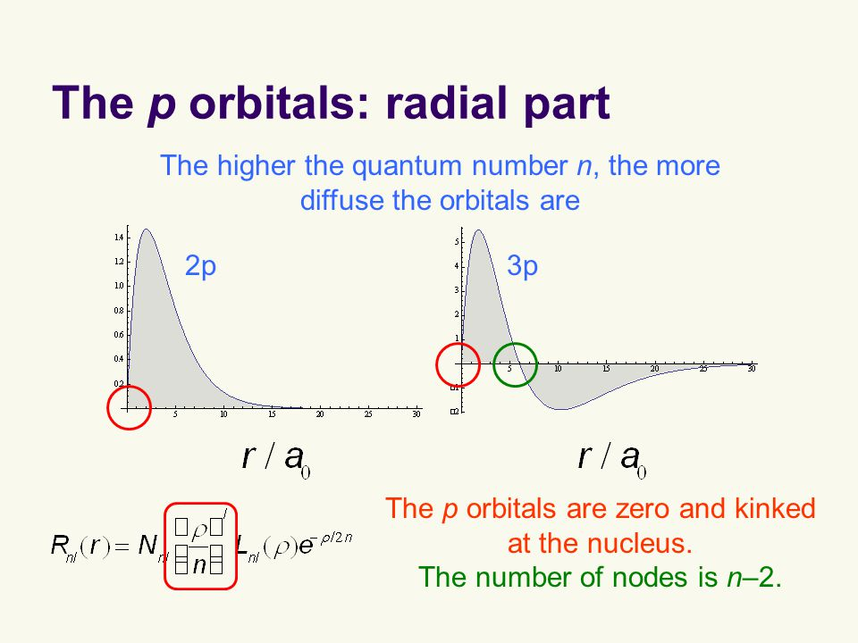 The p orbitals: radial part The p orbitals are zero and kinked at the nucleus.