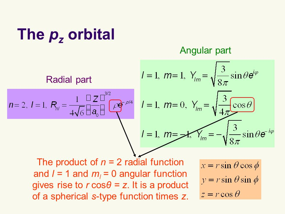 The p z orbital The product of n = 2 radial function and l = 1 and m l = 0 angular function gives rise to r cosθ = z.