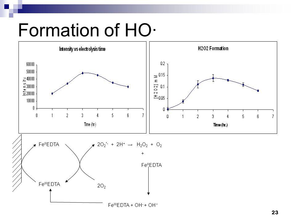 23 Formation of HO· Fe III EDTA Fe II EDTA 2O 2 2O 2 °- + 2H + → H 2 O 2 + O 2 Fe III EDTA + OH - + OH · + Fe II EDTA