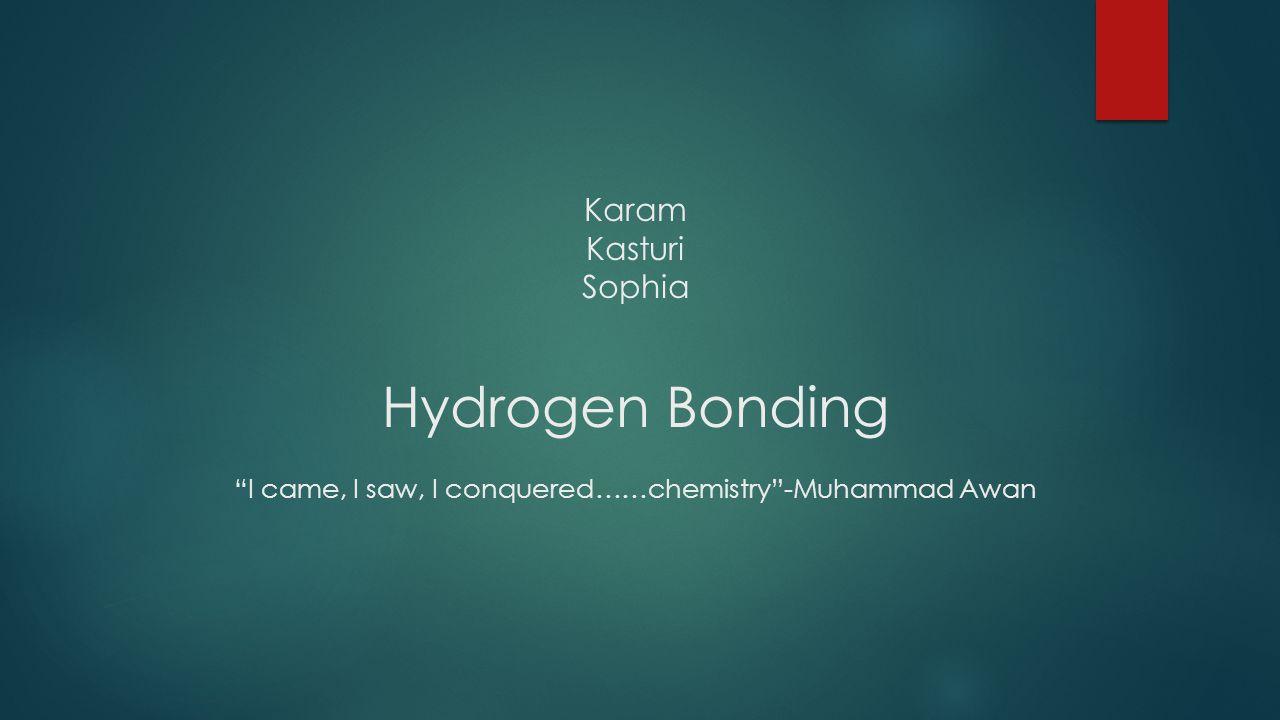 Karam Kasturi Sophia Hydrogen Bonding I came, I saw, I conquered……chemistry -Muhammad Awan