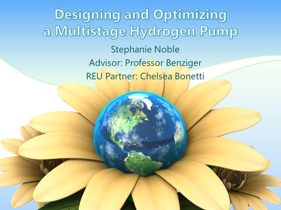 Stephanie Noble Advisor: Professor Benziger REU Partner: Chelsea Bonetti