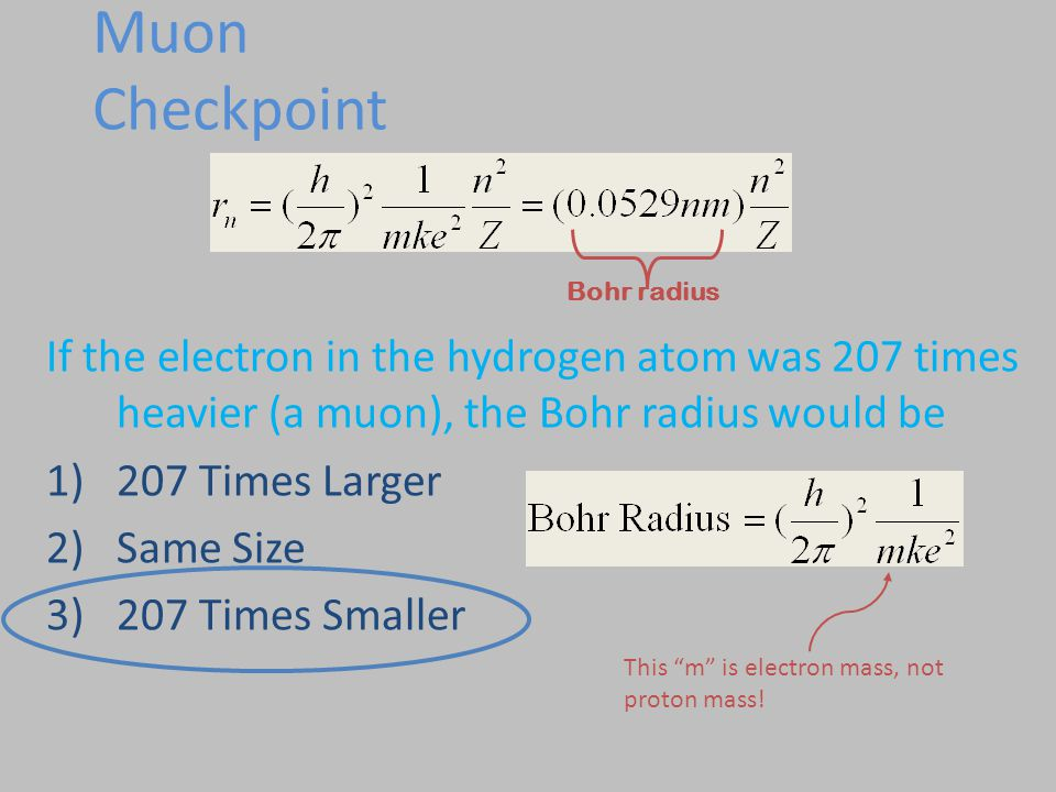 Muon Checkpoint If the electron in the hydrogen atom was 207 times heavier (a muon), the Bohr radius would be 1)207 Times Larger 2)Same Size 3)207 Tim