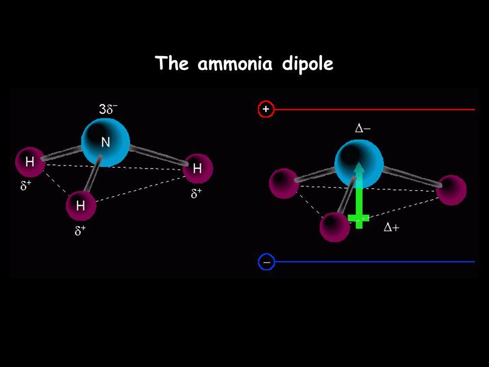 The ammonia dipole