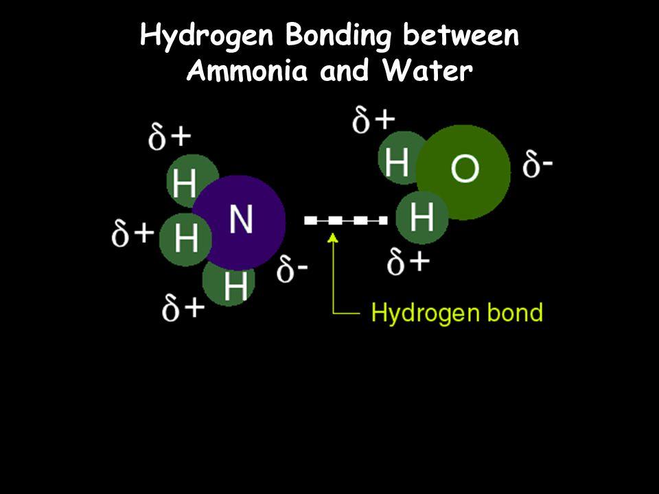 Hydrogen Bonding between Ammonia and Water