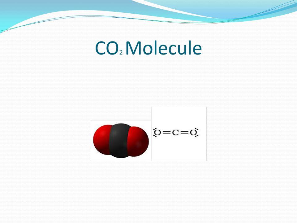CO 2 Molecule