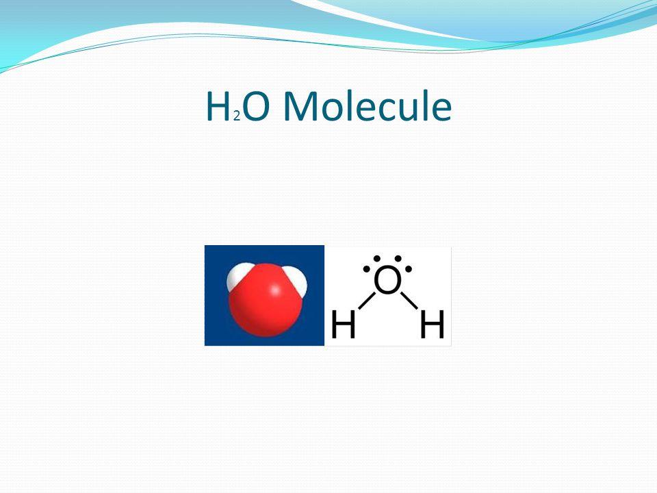 H 2 O Molecule