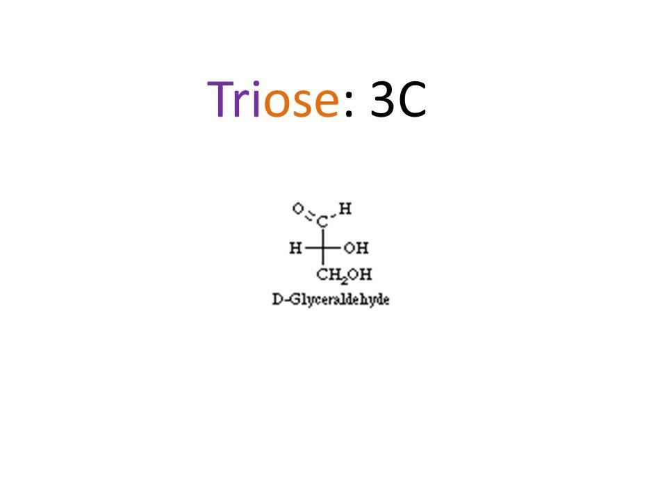 Triose: 3C