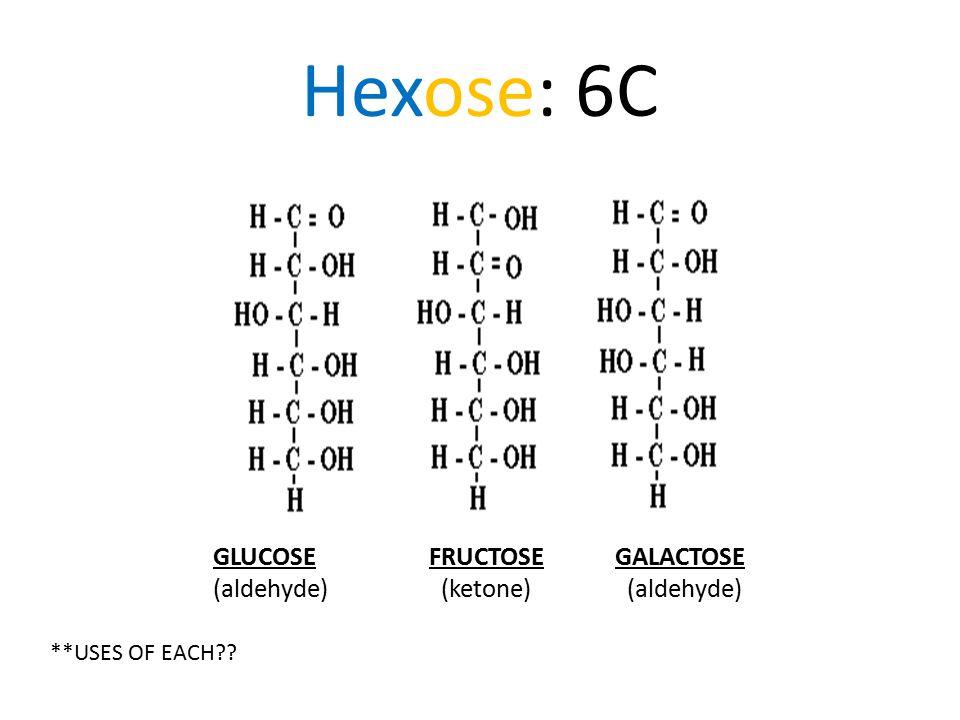 Hexose: 6C GLUCOSE FRUCTOSE GALACTOSE (aldehyde) (ketone) (aldehyde) **USES OF EACH??