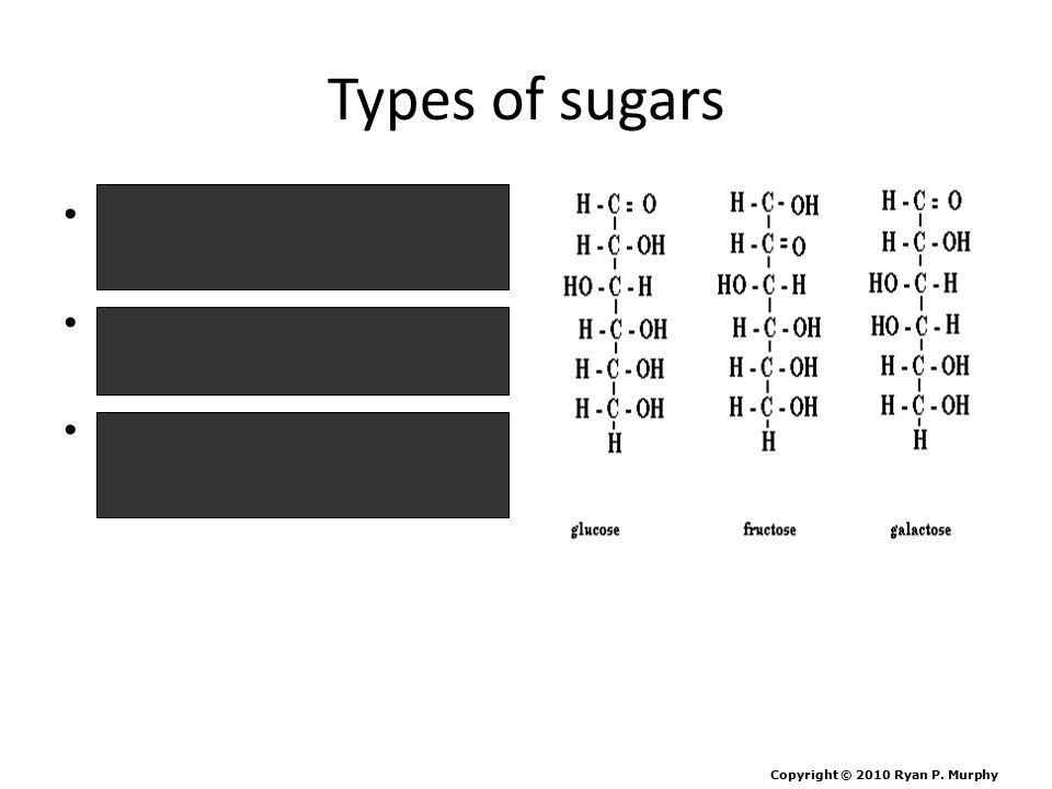 Types of sugars Sucrose = Glucose + Fructose Lactose = Glucose + Galactose Maltose = Glucose + Glucose Copyright © 2010 Ryan P. Murphy