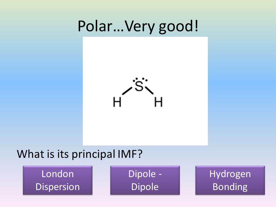Polar…Very good. What is its principal IMF.