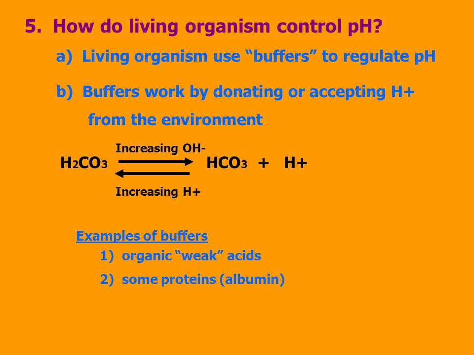 5. How do living organism control pH.