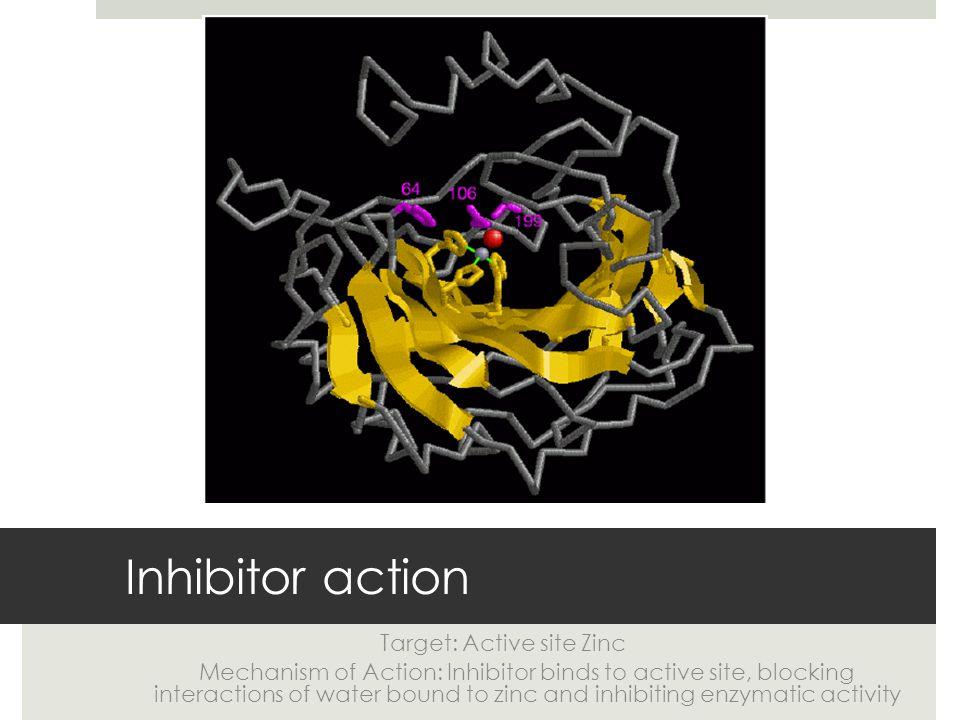 Dorzolamide Drug Target Interaction Hydrogen bond: 3 Length: 1.68, 2.13, 2.16 Bonds off of Threonine and Glutamine Van der Waals interaction: Perfect steric fit.