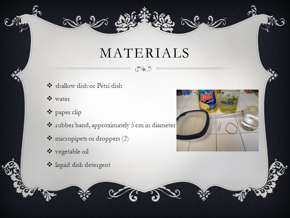 MATERIALS  shallow dish or Petri dish  water  paper clip  rubber band, approximately 5 cm in diameter  micropipets or droppers (2)  vegetable oil  liquid dish detergent