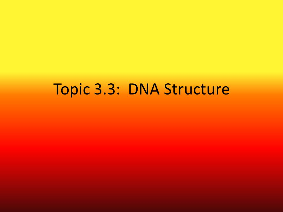 Topic 3.3: DNA Structure