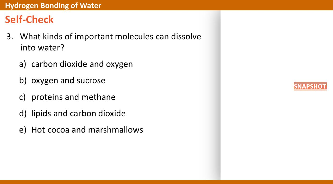Self-Check 3. What kinds of important molecules can dissolve into water? a)carbon dioxide and oxygen b)oxygen and sucrose c)proteins and methane d)lip
