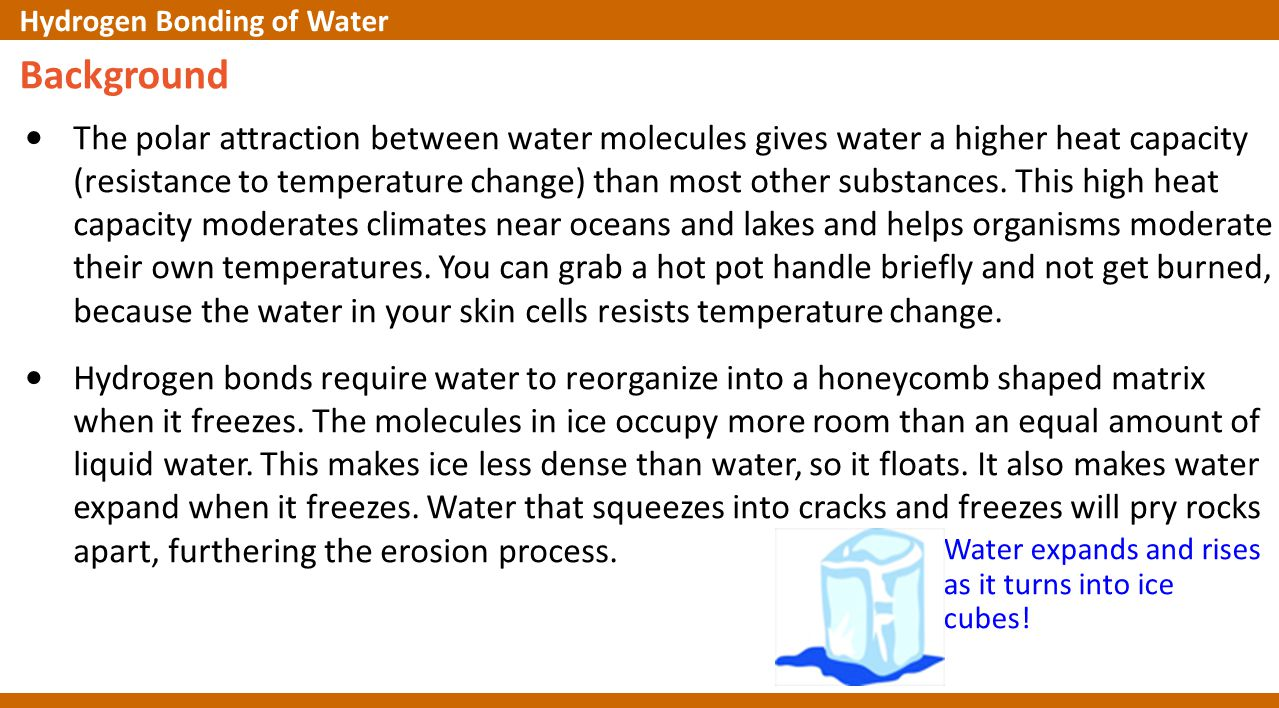 Water expands and rises as it turns into ice cubes! Background The polar attraction between water molecules gives water a higher heat capacity (resist