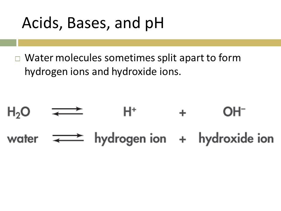 Acids, Bases, and pH  Water molecules sometimes split apart to form hydrogen ions and hydroxide ions.
