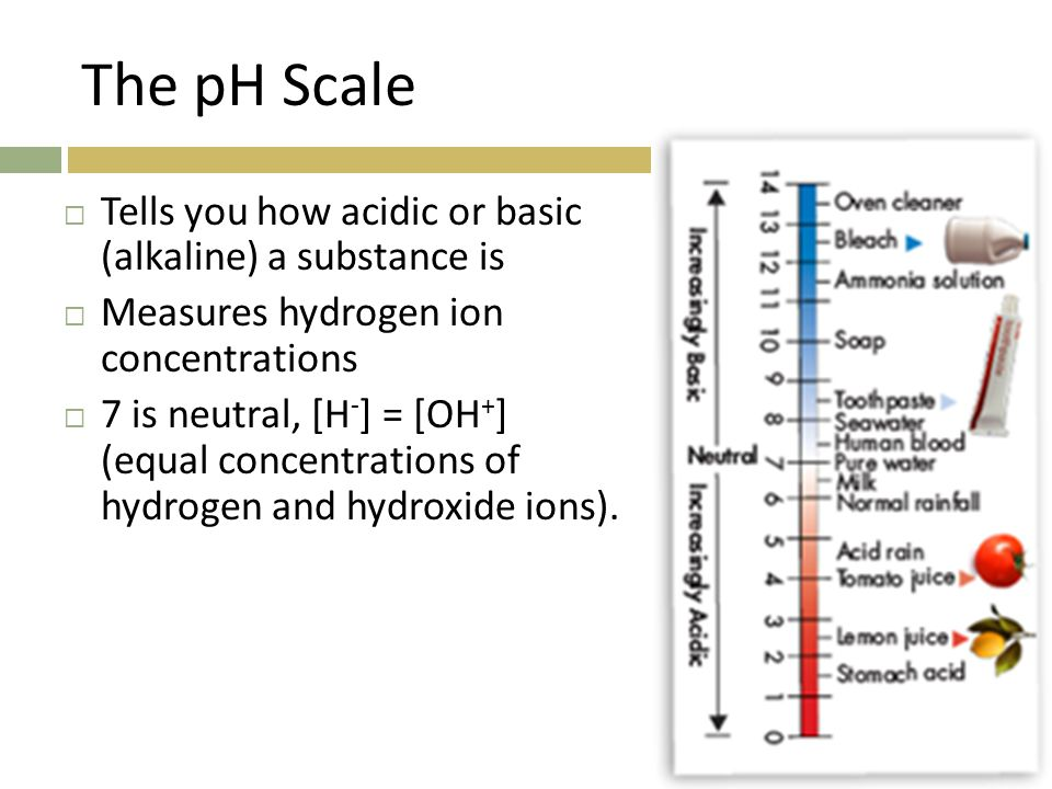 The pH Scale  Tells you how acidic or basic (alkaline) a substance is  Measures hydrogen ion concentrations  7 is neutral, [H - ] = [OH + ] (equal