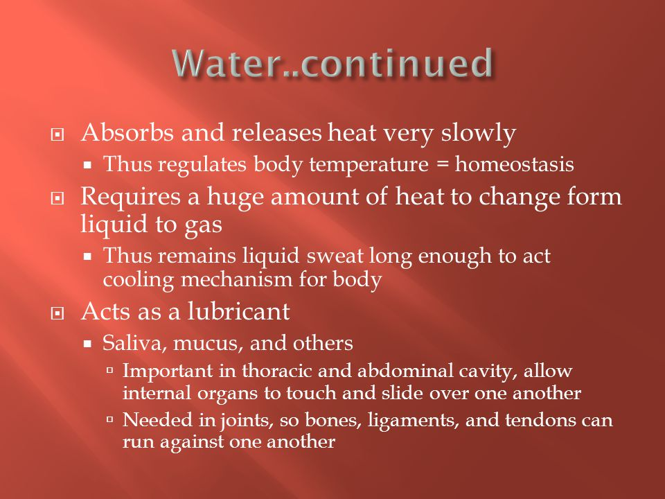  Absorbs and releases heat very slowly  Thus regulates body temperature = homeostasis  Requires a huge amount of heat to change form liquid to gas  Thus remains liquid sweat long enough to act cooling mechanism for body  Acts as a lubricant  Saliva, mucus, and others  Important in thoracic and abdominal cavity, allow internal organs to touch and slide over one another  Needed in joints, so bones, ligaments, and tendons can run against one another