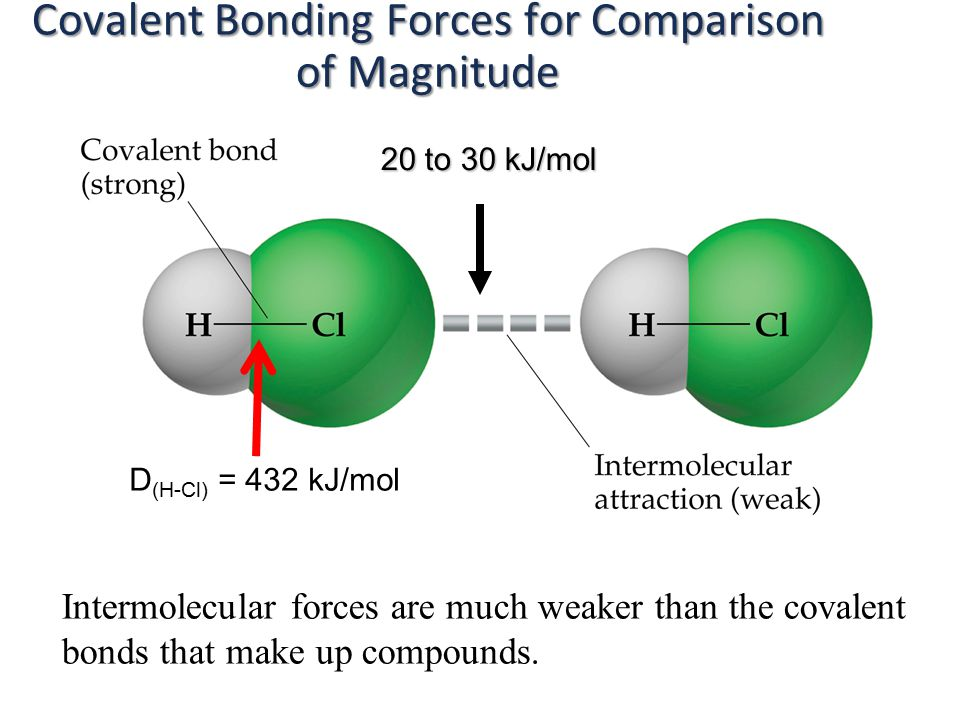 Intermolecular forces are much weaker than the covalent bonds that make up compounds.