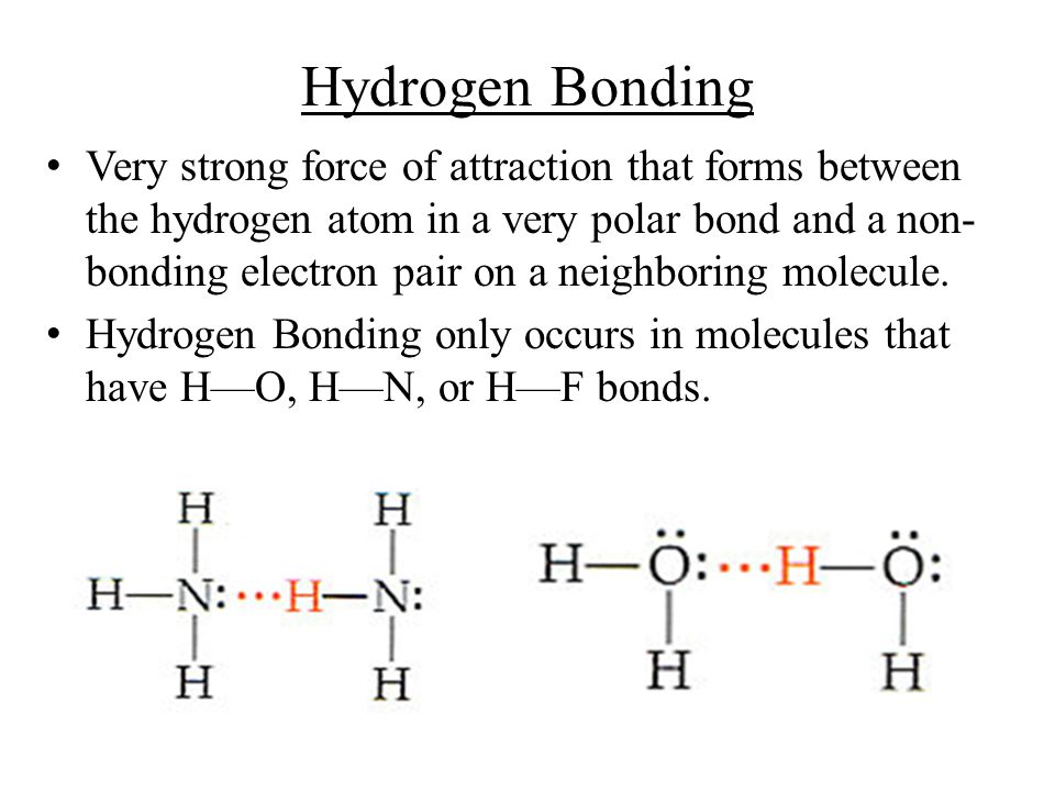 The hydrogen bonds formed by H 2 O molecules are particularly strong, giving water many of its unique properties.