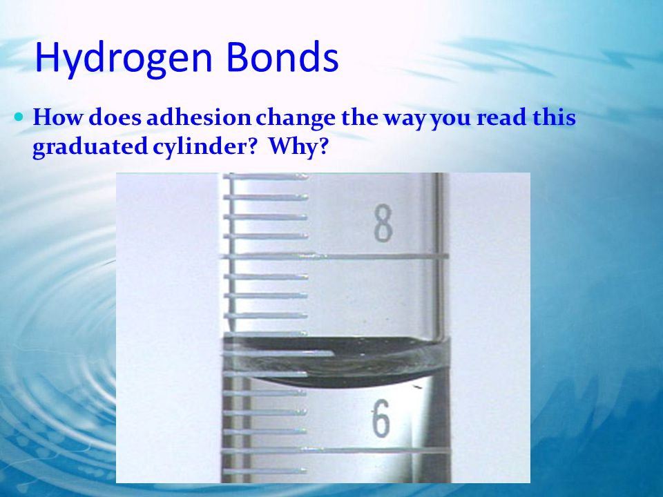 Hydrogen Bonds How does adhesion change the way you read this graduated cylinder? Why?