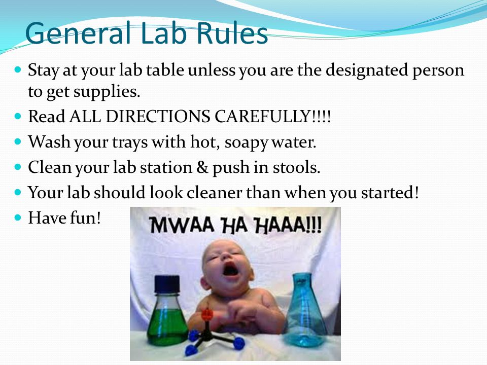 General Lab Rules Stay at your lab table unless you are the designated person to get supplies.
