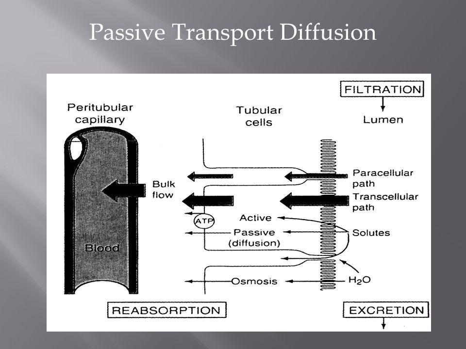 Passive Transport Diffusion